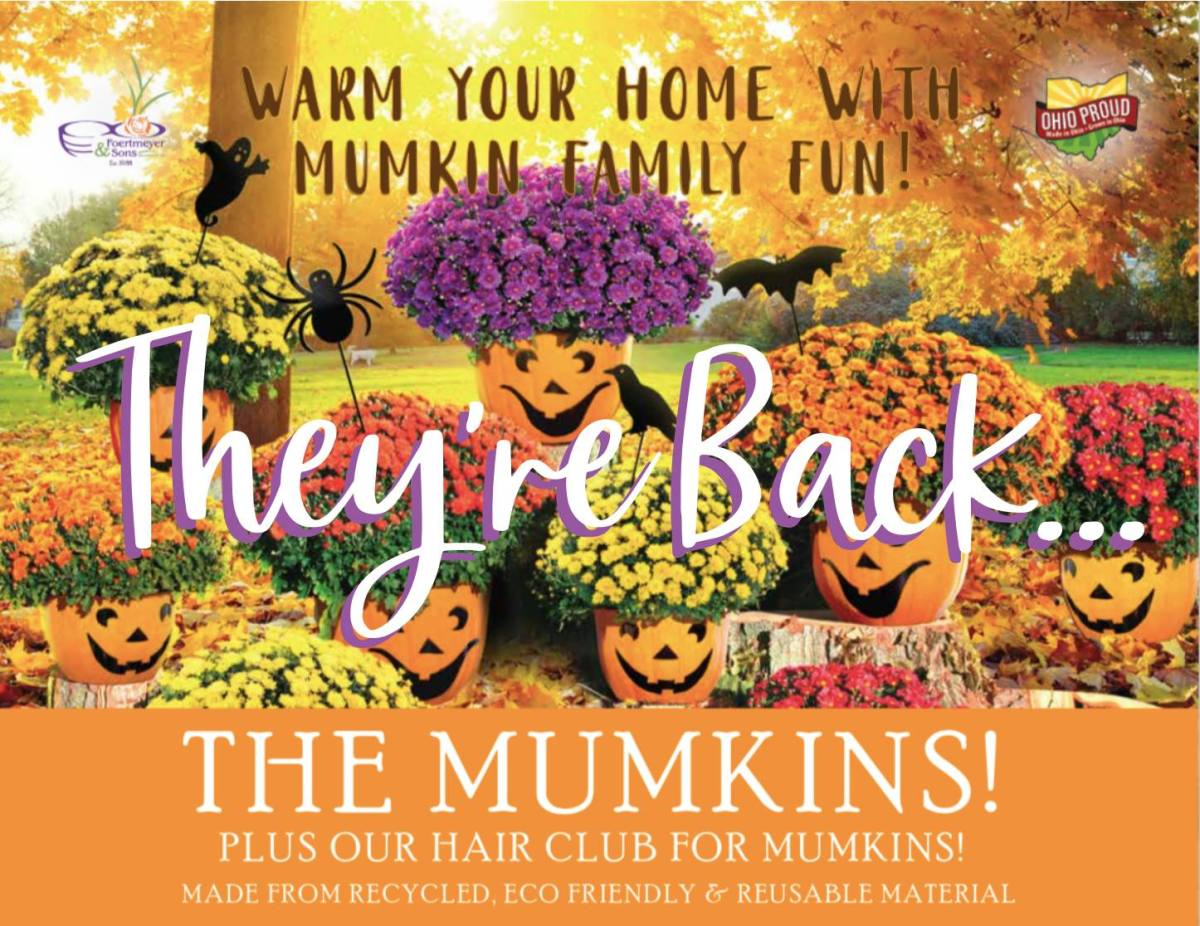 """Featured image for """"Fall Mumkins Sale"""""""
